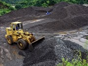 Coal exports likely to fall this year