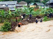 Floods, landslides blight northern Vietnam