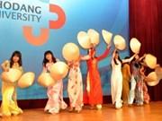 Cultural festival boosts Vietnam-RoK ties