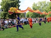 Festival brings Vietnamese culture to international friends
