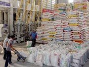 Vietnam ships over 4 million tonnes of rice