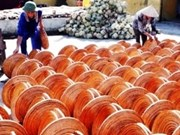IFC pledges to support Vietnam's economic growth