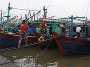 ILO helps VN realise Maritime Labour Convention
