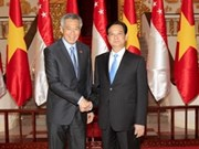 Vietnam, Singapore establish strategic partnership