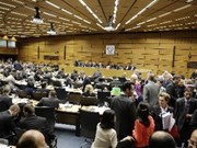 VN elected chair of IAEA Board of Governors