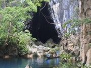 A four-hour tour of the Chay river and Toi cave