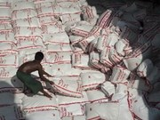 Thailand calls for bids on 300,000 tonnes of rice