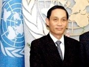 Vietnam to actively build UN new development agenda