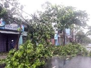 Storm Nari hits central region