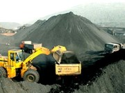 Vinacomin aims to export over three million tonnes of coal