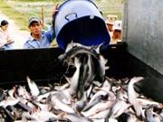 Demand drives seafood exporters towards Brazil