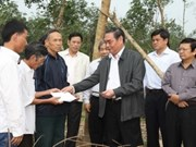 Party official lauds Quang Binh's post-storm clean-up