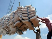 Can Tho targets 1.3 mln tonnes of rice in 2014