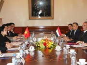 Vietnam strengthens ties with Egypt