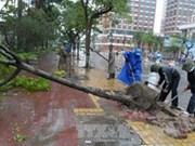 Typhoon Haiyan claims four lives in Thua Thien-Hue