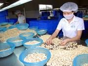 Vietnam, Kazakhstan eye all-around cooperation