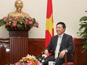 New Deputy PM: external activities serve national development