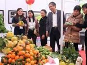 Trade fair promotes agricultural development