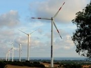 Soc Trang offers sweeping opportunities for wind power