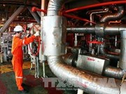 Vung Tau exhibition promotes oil and gas
