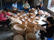 Rattan, bamboo processing eyes large-scale production