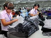 Vietnam-South Africa trade to hit 875 million USD