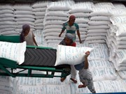 Can Tho targets 1 mln tonnes in rice export