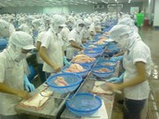 Vietnam's seafood exports possess potential