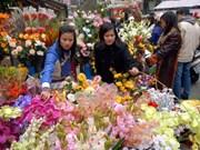 Hanoi: Quang An flower market, a special treat