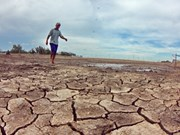 Calculator 2050 helps Vietnam respond to climate change