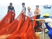 Films show Hoang Sa, Truong Sa archipelagoes