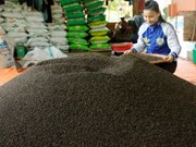 Pepper exports to break annual record