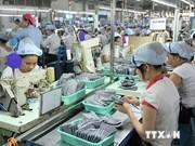 Dubai group looks to invest in Vietnam
