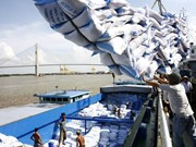 Mekong Delta contributes to rice export growth