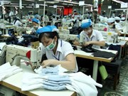 Binh Duong successful in attracting FDI for industrialisation