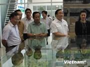 Deputy PM makes field trip to HCM City