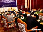 Vietnam shares strategy building experience with Laos