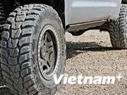 Foreign investors pump millions of USD into tires