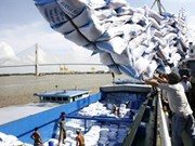 Gov't pushes rice export