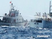 Vietnamese ships hindered in national waters