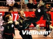 Binh Dinh kicks off martial arts festival