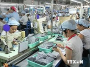 Vietnam's exports to Brazil up 33.3 pct