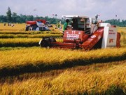 Loans given to Mekong Delta farmers to purchase combines