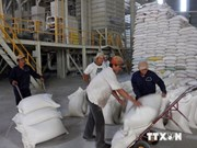 Vietnam exports over 4.4 million tonnes of rice in 8 months
