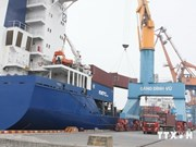 Cargo piles up at Hai Phong Port