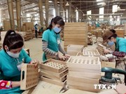 Dong Nai's timber exports exceed 600 million USD