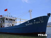 Quang Nam invests in new ships to develop fisheries