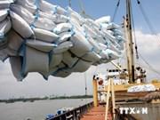 Vietnam's exports to Belgium sharply increase
