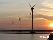 Vietnam's wind power development approved