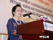 Vietnam acts as coordinator for ASEAN-Russia partnership